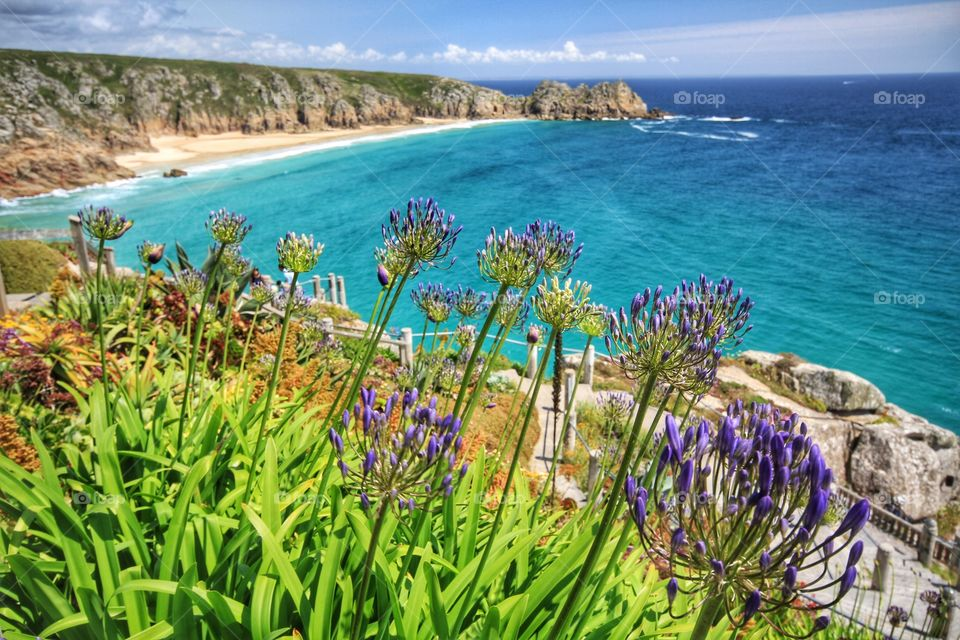 Porthcurno Beach in Cornwall on a beautiful, hot, sunny day. A landscape image of a sandy Cornish beach from cliff tops.