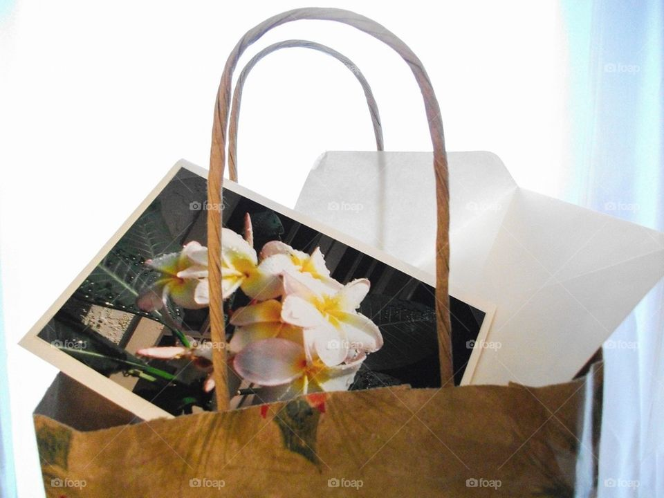 All Occasion Gift Bag and Card