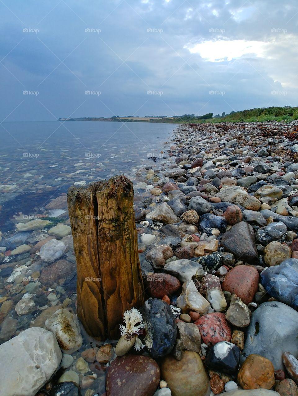 abend Strand holz Treibholz steine stone