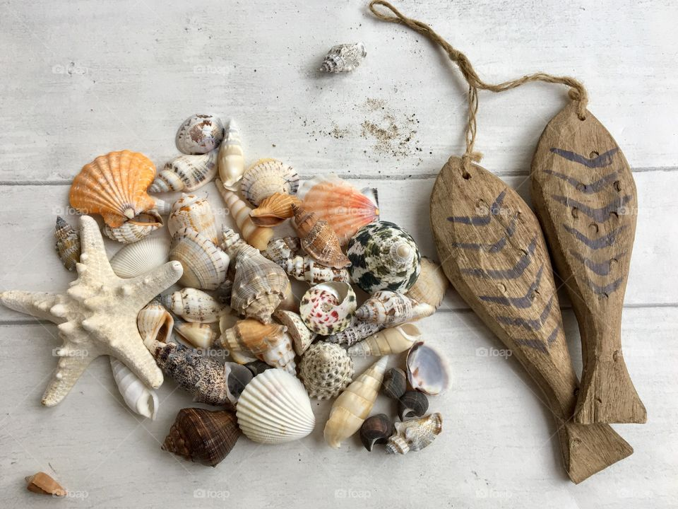 Variety of seashells with wooden fish