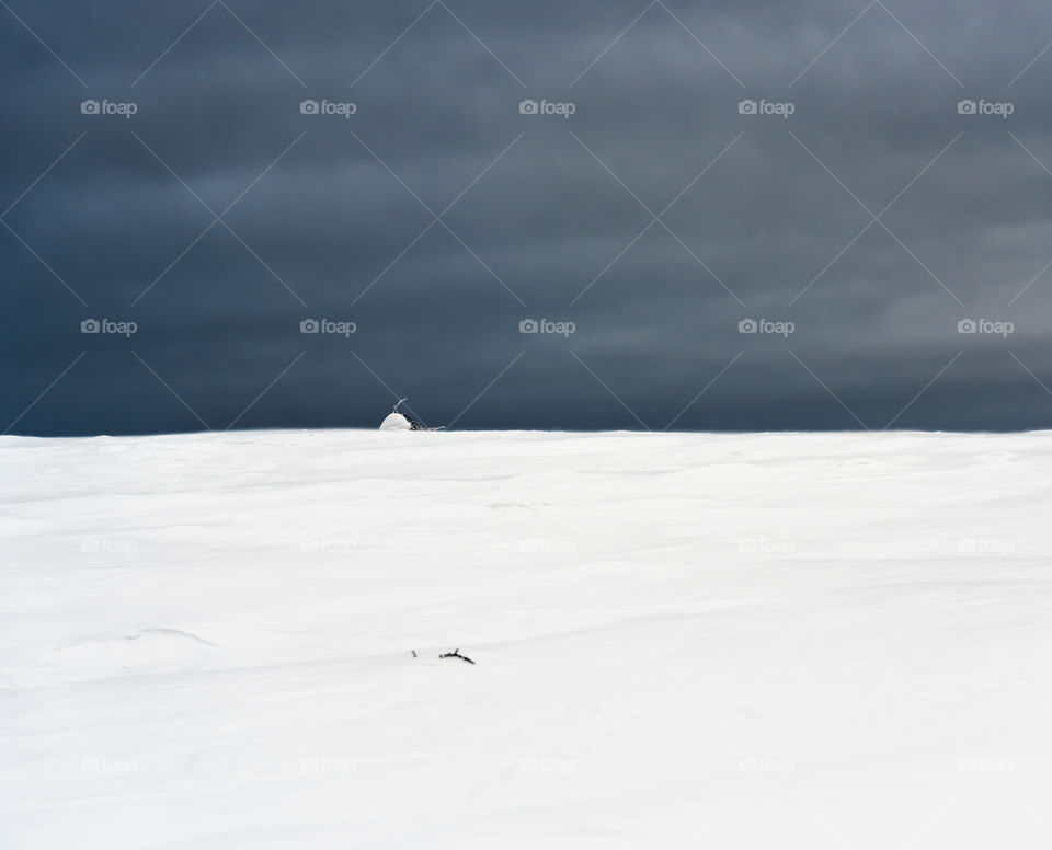 Winter scene divide equally to snow and blue sky execpt for small small mound tipping the scale for white.