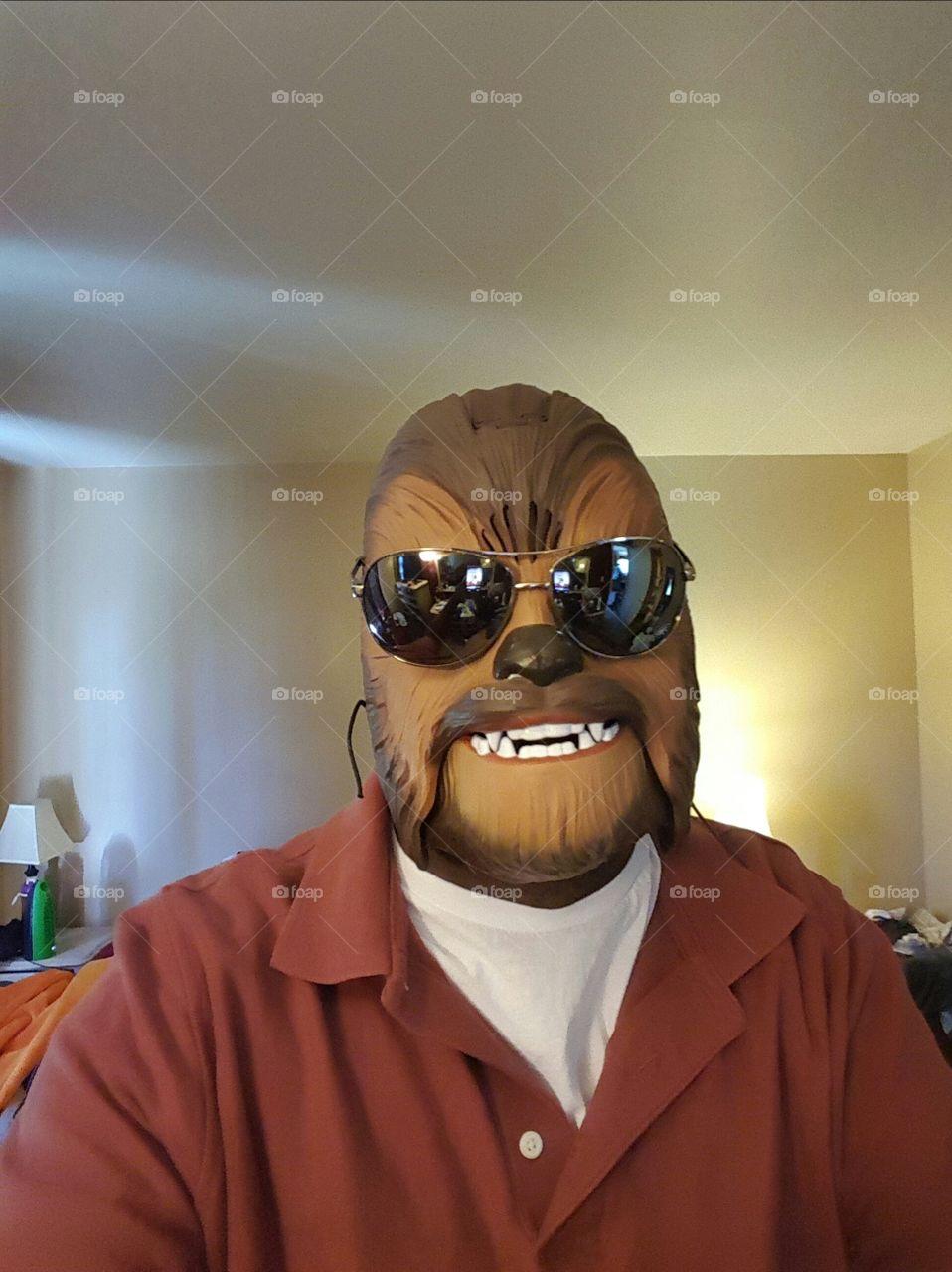 Chewbacca in shades