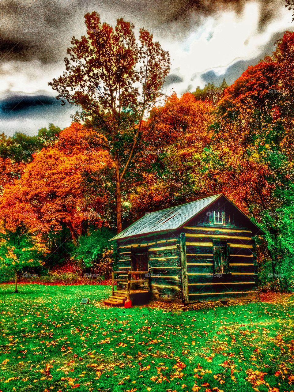 Cabin at Parker Mill, MI