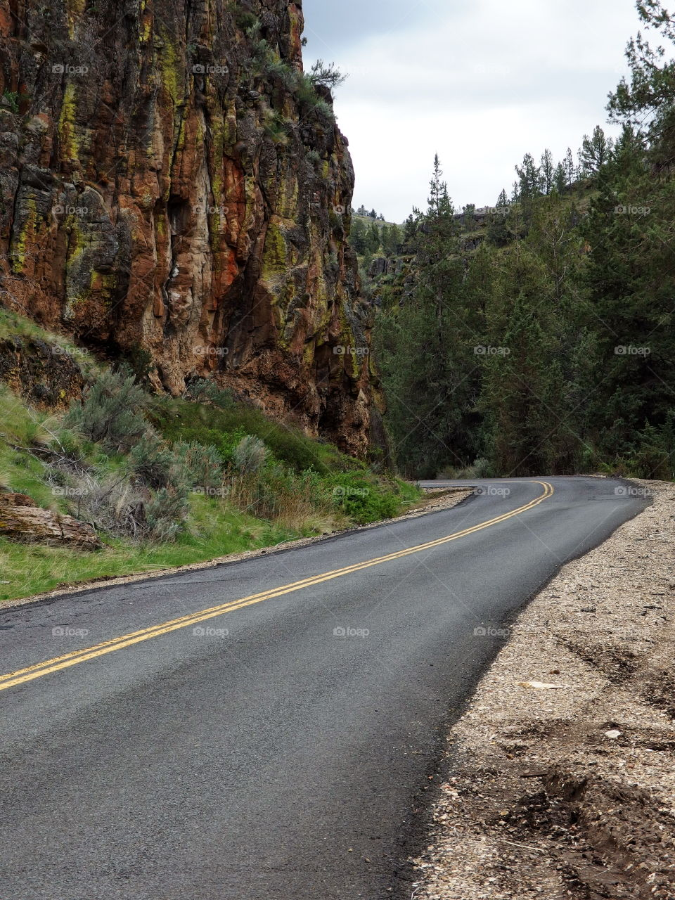A road in Eastern Oregon winds through canyons, hills, and cliffs covered in trees and fresh green sagebrush on a sunny spring morning.