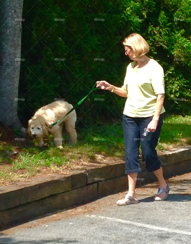 Senior citizen, Older woman walking Older dog.