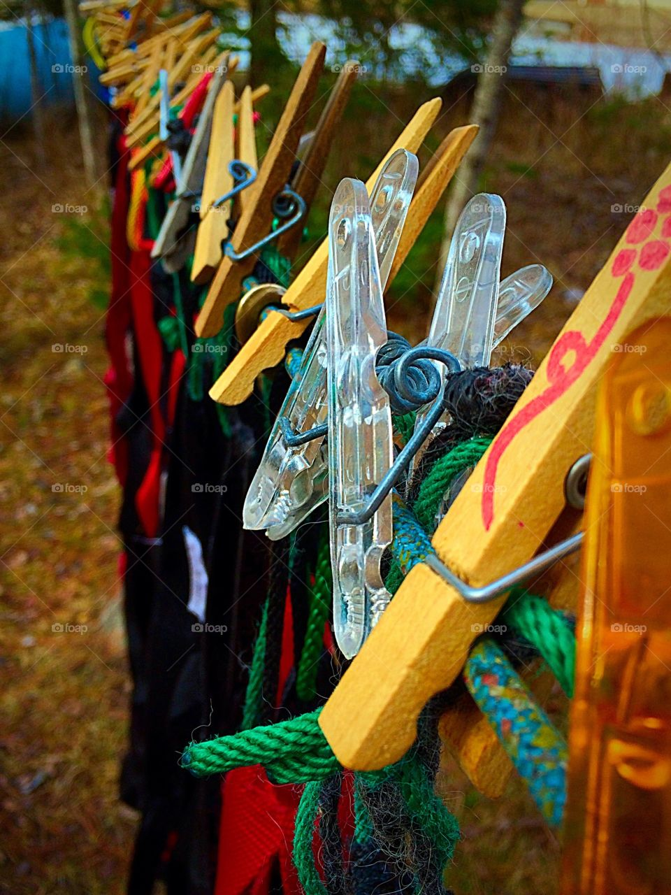 Hanging dog harnesses after a long season of dog sledding. They needed the washing.