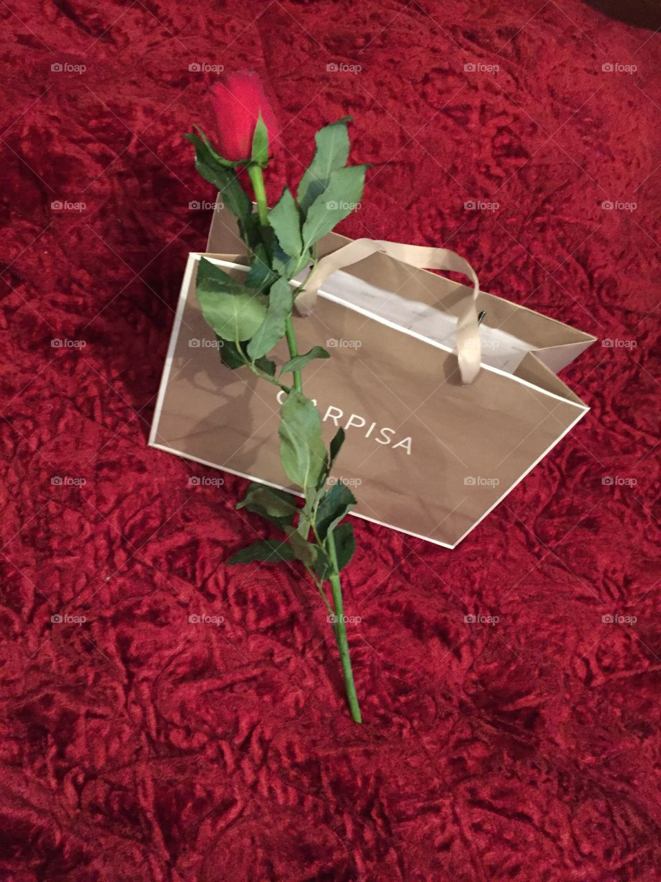 No Person, Gift, Paper, Celebration, Flower