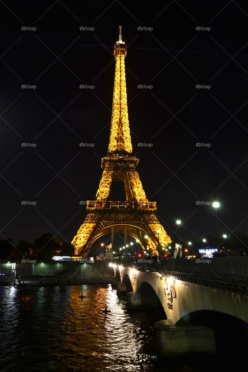 View of the Eiffel Tower at night