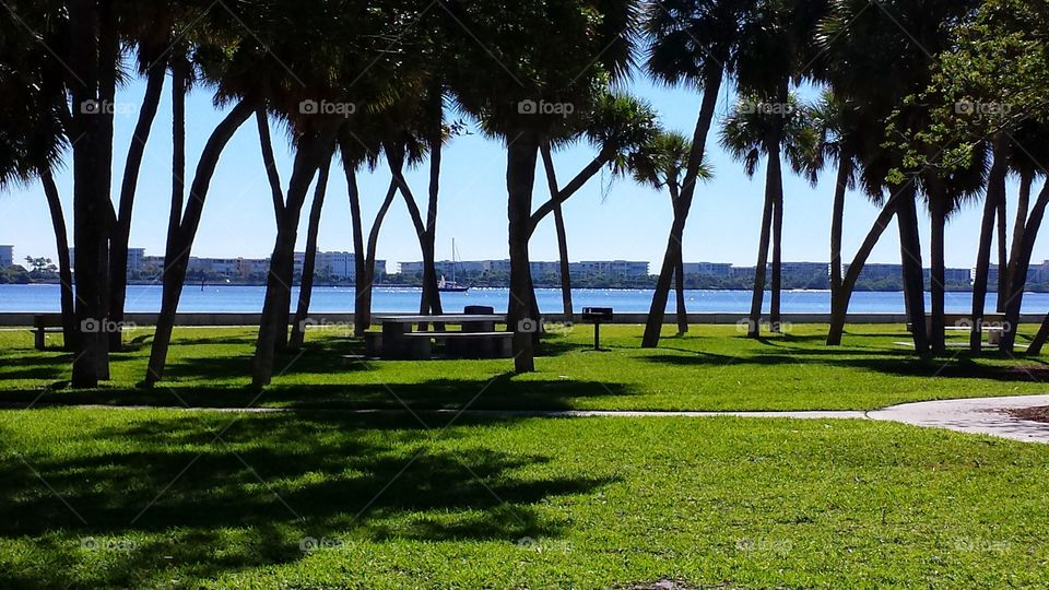 lakeworth park. view from the park