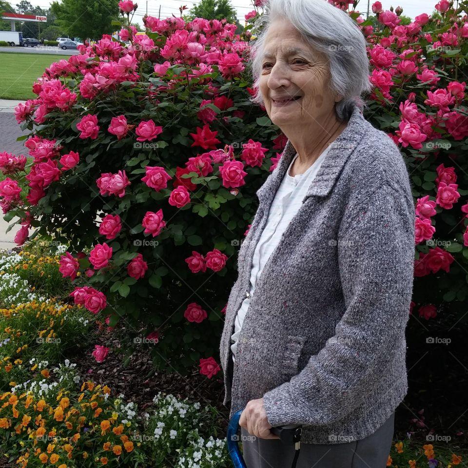 Grandma Enjoying the Roses. My grandmother enjoying the rosebushes outside her doctors office