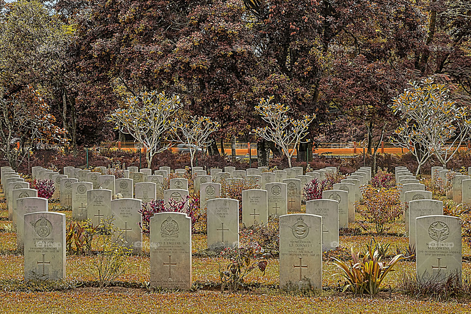 cemetery of british soldiers