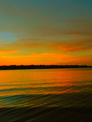 Golden Yellow Blushing Sunset! The sunset glimmers across the bayou waterway as the sun descends below the horizon!