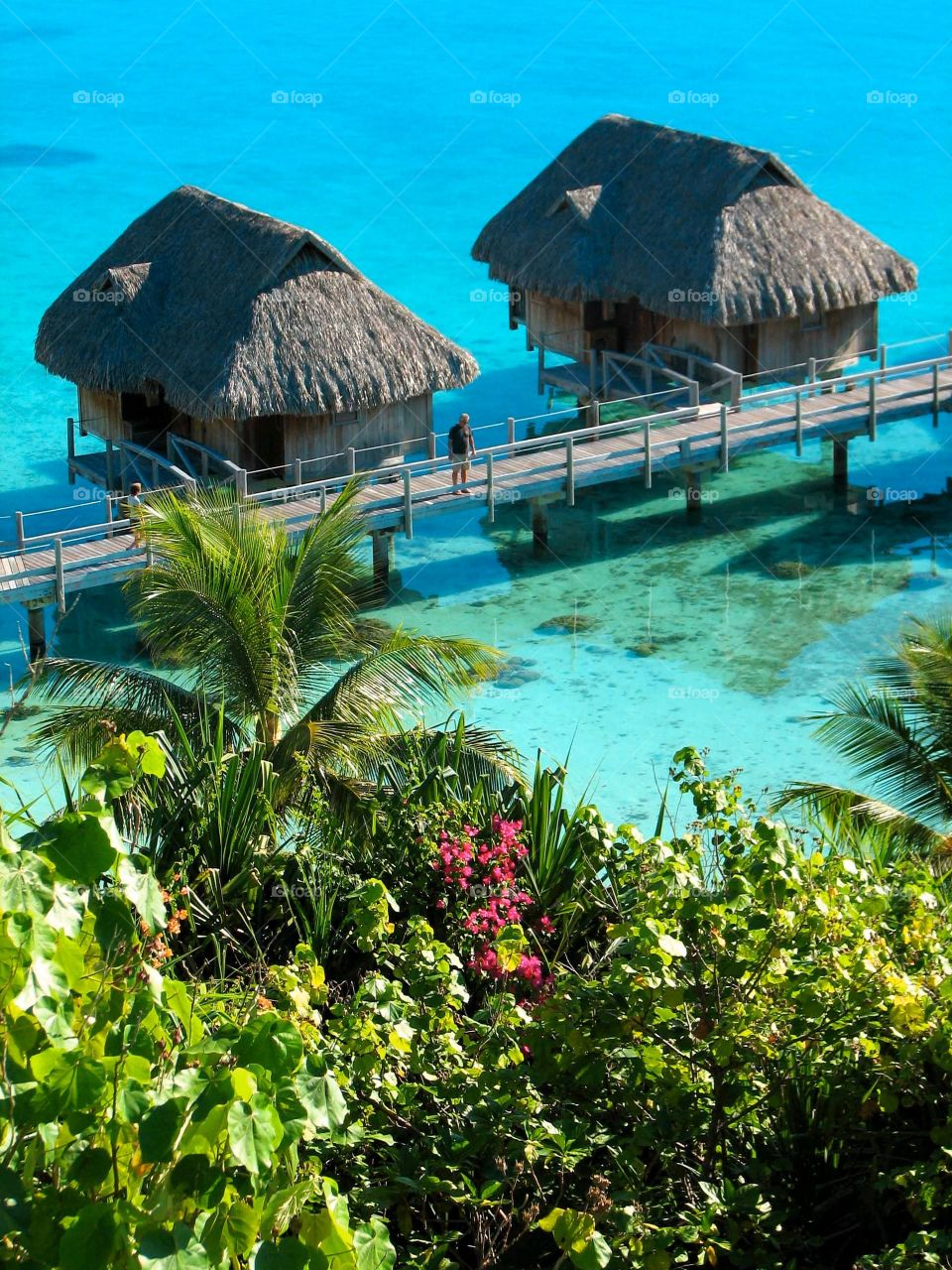 Overwater bungalows. Overwater bungalows in Bora Bora at the Sofitel Private Island, French Polynesia