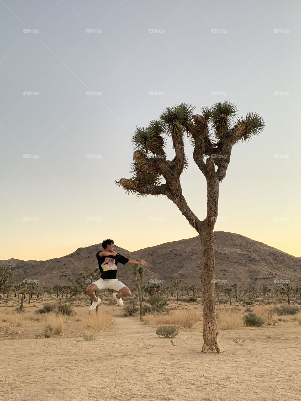 Jumpshot with joshuatree