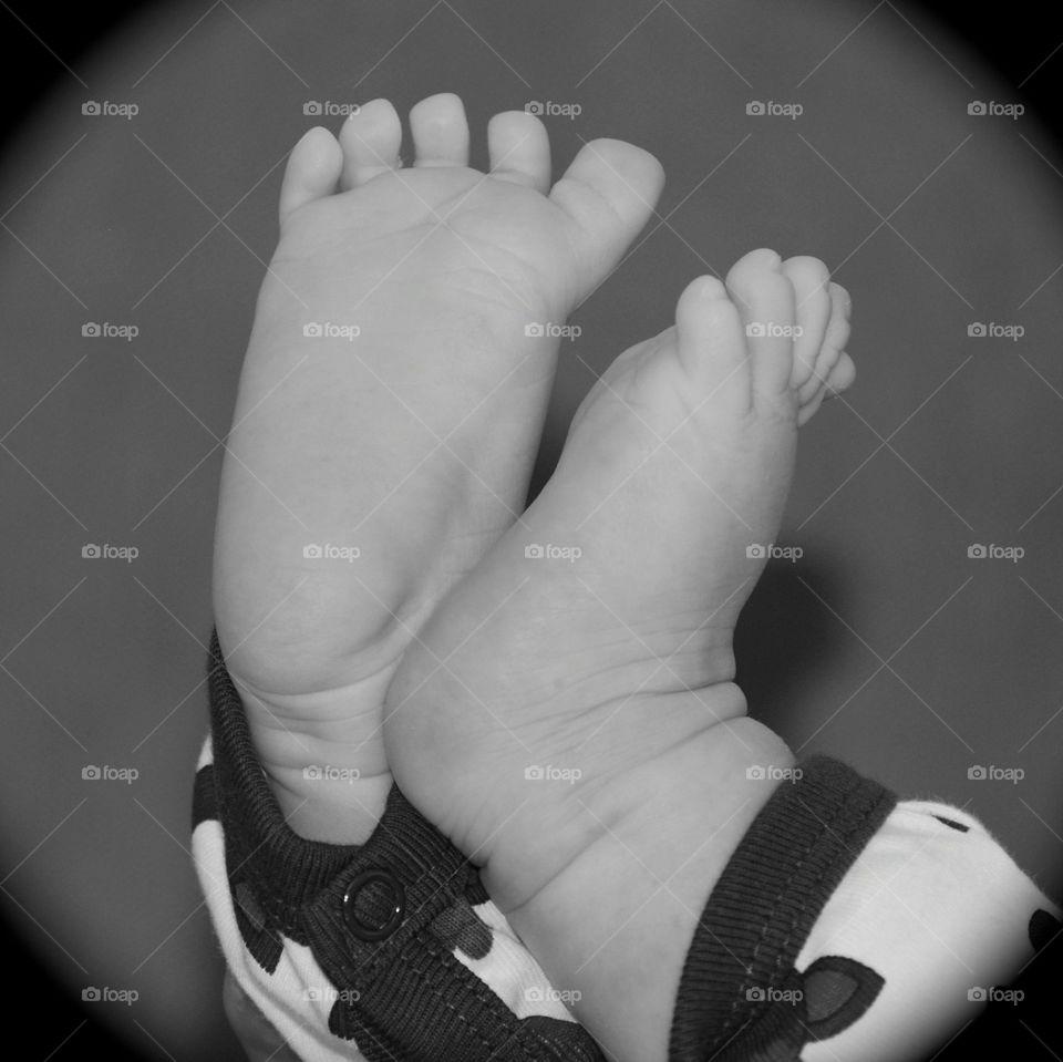 Seven weeks old feet